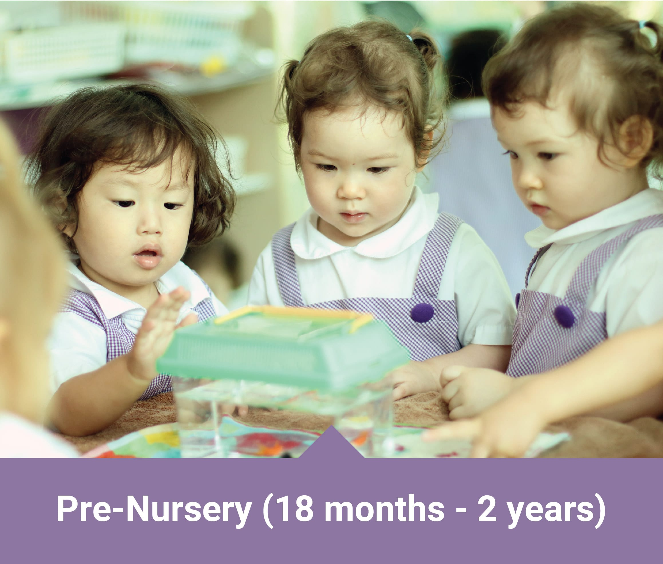 Mulberry Learning Pre-Nursery