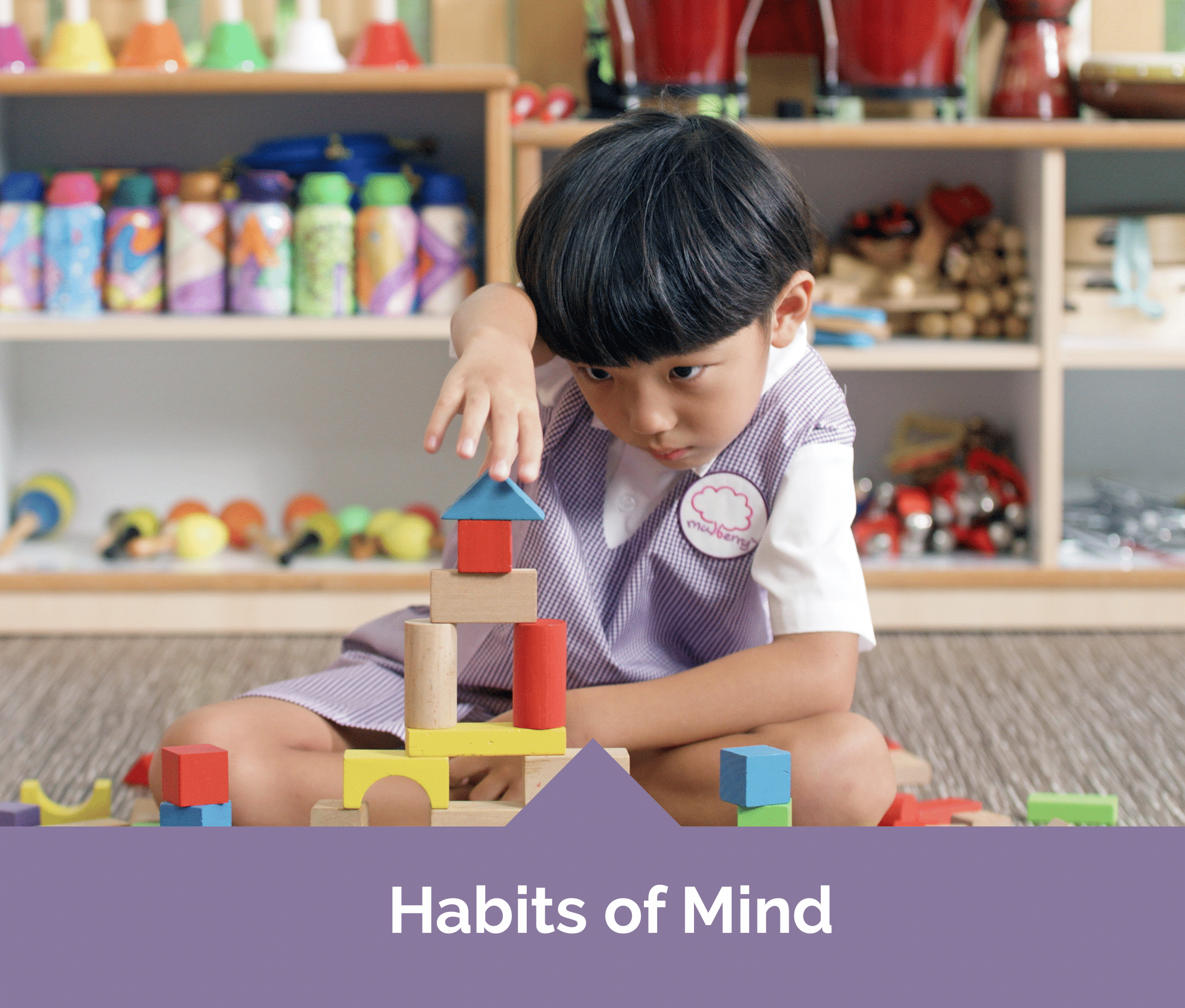 Mulberry Learning Preschool Habits of Mind