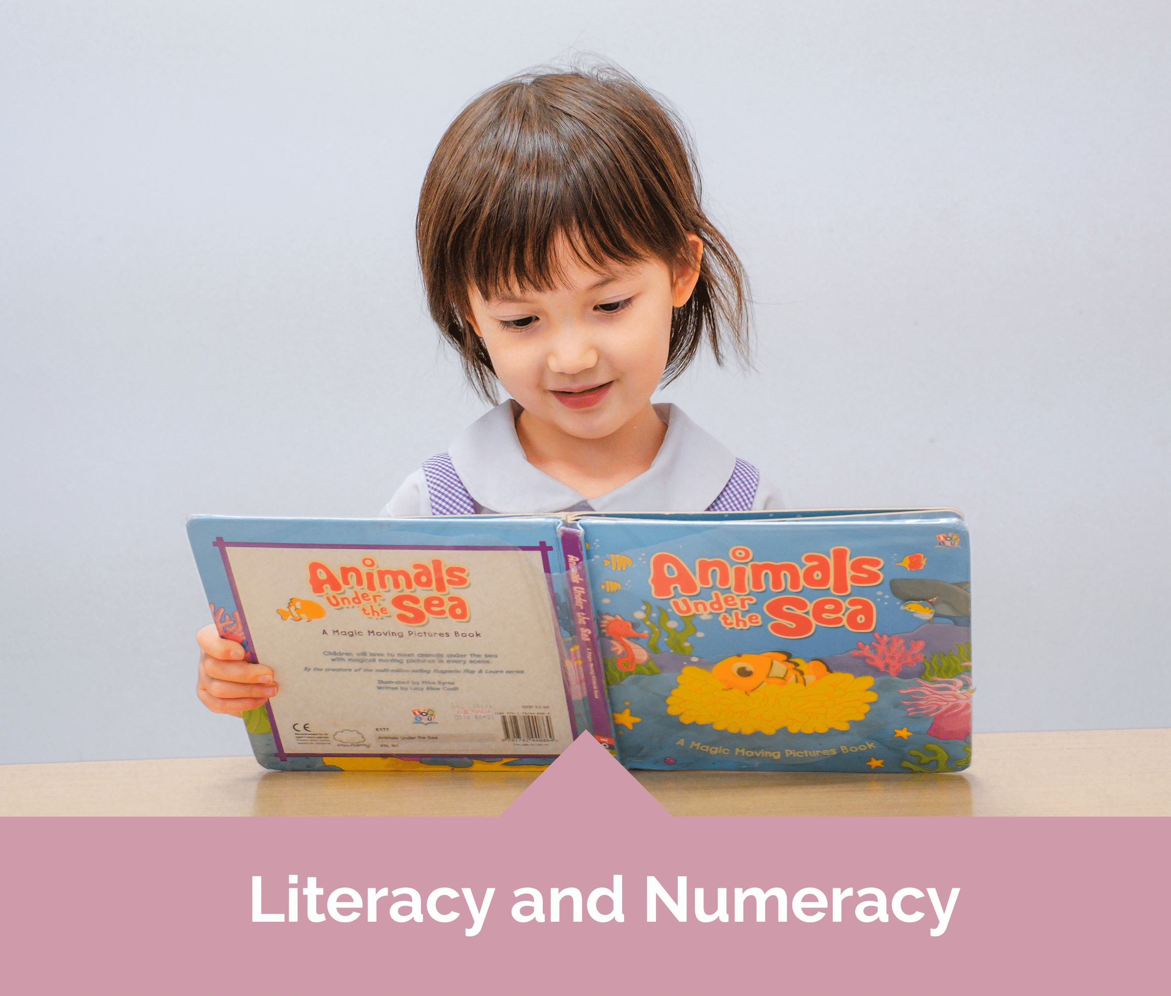 Mulberry Learning Preschool Literacy and Numeracy