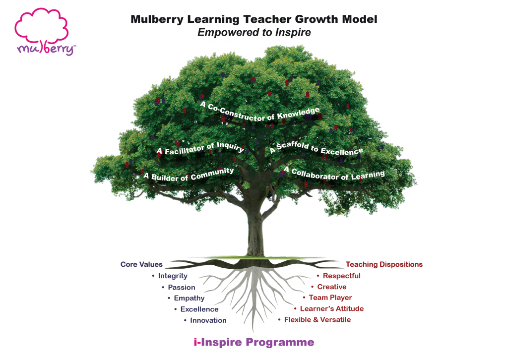 Mulberry Learning Revamp Professional Development Programme for Teachers